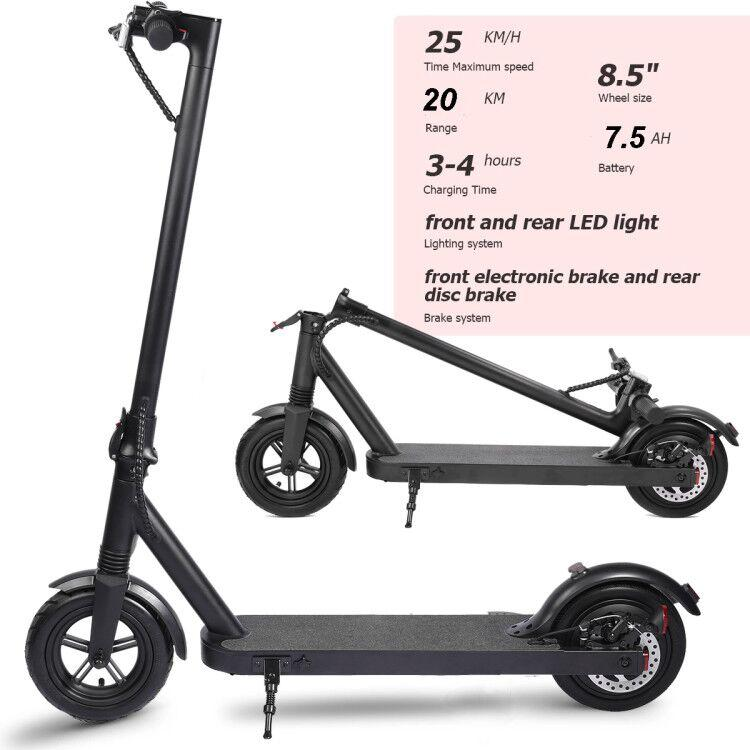 iEZway Electric Scooter EZ8